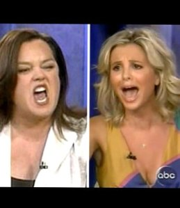 The View enjoyed its highest ratings with Rosie O'Donnell and Elisabeth Hasselbeck's feud.